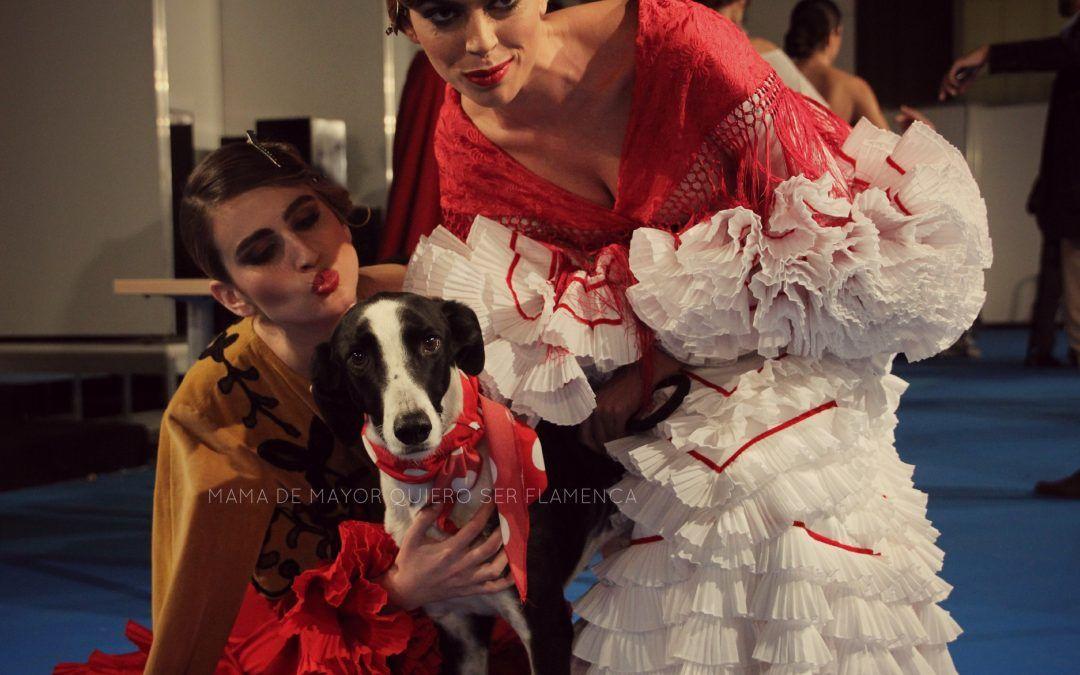 Flamenca 2015 – Rocío Peralta